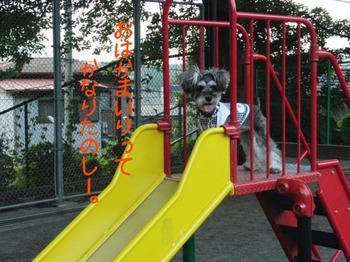 町田公園1.jpg