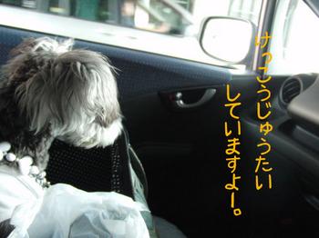 車内2.jpg